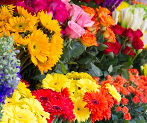 The best Florists in Oklahoma City, OK
