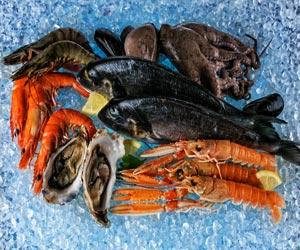 Lo mejor en Pescaderías y Mercados de Mariscos en Tampa, FL